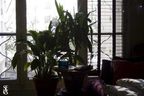 Lumière dans mon salon