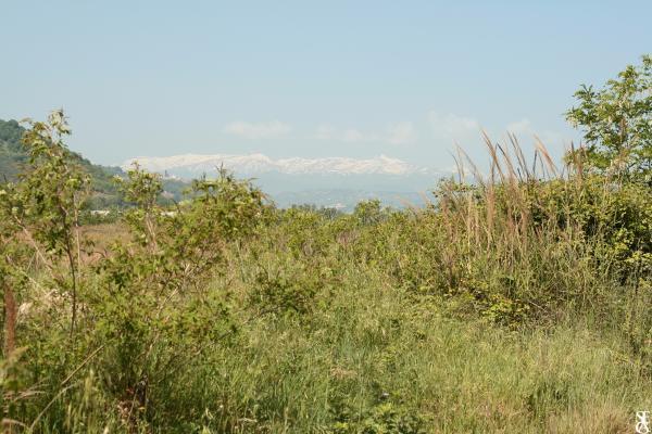 Plaine et montagne