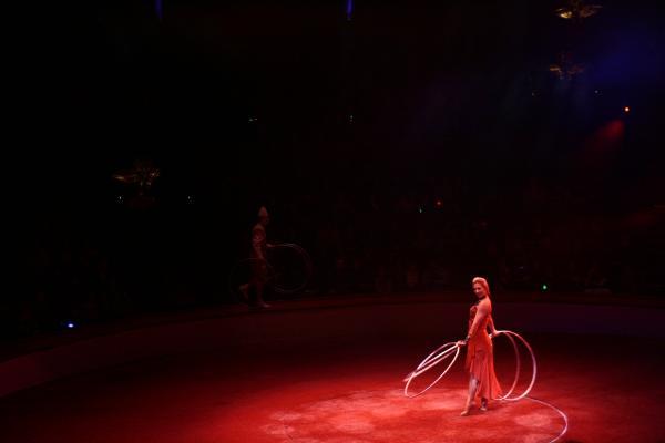 Danseuse à cercles tournants (suite)