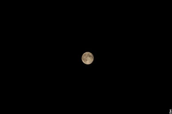La luna è piena