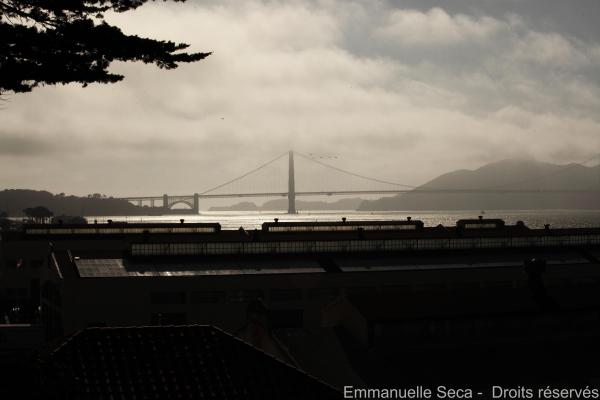 Golden Gate (2)
